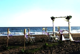 beach-wedding-setup