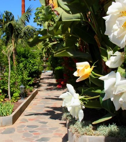 Romantic Wedding Venue Tenerife (400)