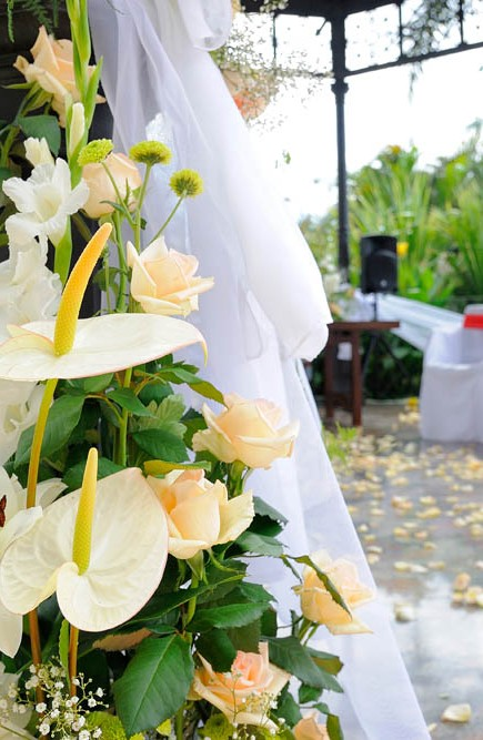 Wedding -Amy-and-Christopher-in-tenerife-myperfectwedding-208