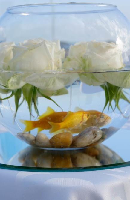 wedding-Una & Gary-in-Tenerife-myperfectwedding-NAF_096