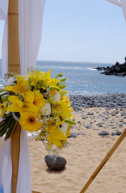 wedding-Una & Gary-in-Tenerife-myperfectwedding-NAF_142