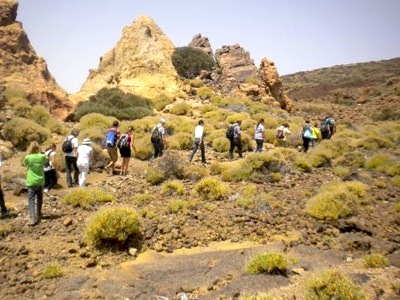 teide-walking-tours-jpg